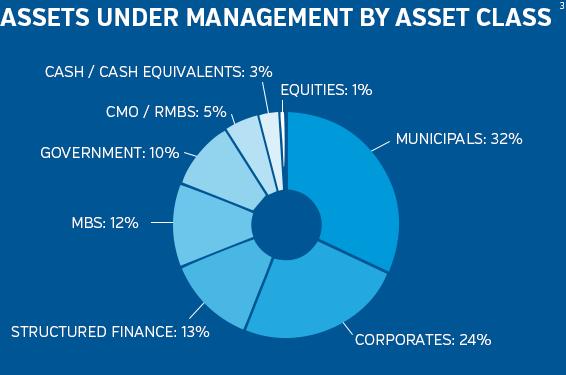 NEAM Assets Under Management by Class