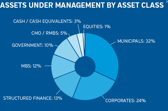 NEAM Assets Under Management by Class