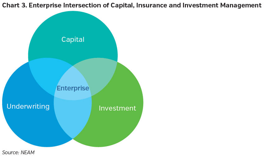 NEAMgroup_enterprise_intersection_of_capital_insurance_investment_management