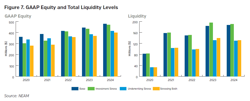 NEAMgroup_GAAP_equity_and_total_liquidity_levels